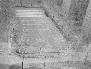 UP ABOVE IT ALL–A view of Stuy Town's Playground 5