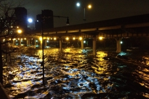 The East River flows west under the FDR Drive last October 29. (Photographer unknown)