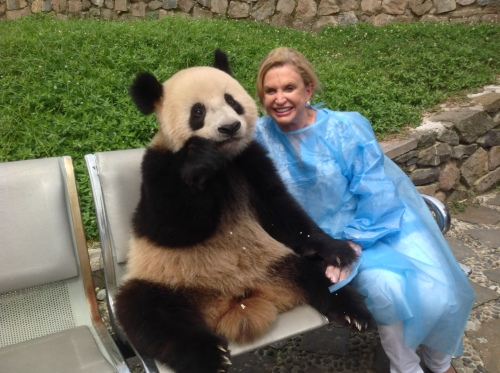 Congresswoman Carolyn Maloney with a giant panda named Han Han during a recent trip to China