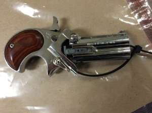 Loaded . 22 caliber Derringer allegedly found in Mark Nickay's pocket