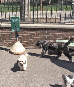 A dog waste bag dispenser at a Stuyvesant Town playground during a Dog Days event (Photo by Sabina Mollot)