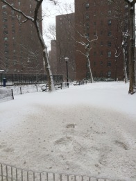 snow-covered-roadway