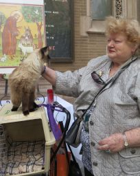A woman coaxes her cat out of its carrier to take part in the ceremony.